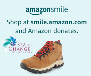 This image has an empty alt attribute; its file name is Small-Banner-Amazon.jpg
